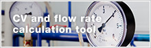 CV and flow rate calculation tool